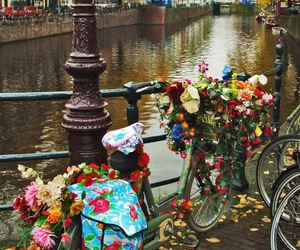 flowers, amsterdam, and bike image