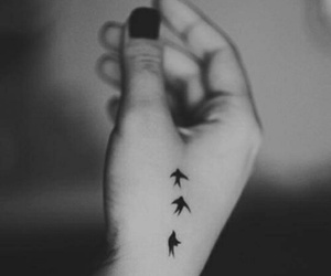 tattoo, bird, and hand image
