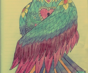 bird, drawings, and colours image