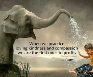 compassion and kindness image