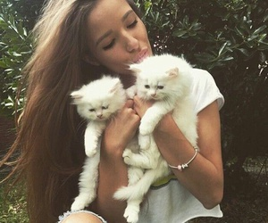 beauty, gorgeous, and kitties image