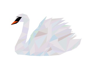 black swan, Swan, and illistustrator image