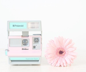 aesthetic, pastel, and camera image