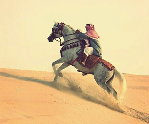horse, arab, and arabic image