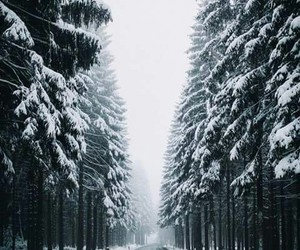 Dream, road, and snow image