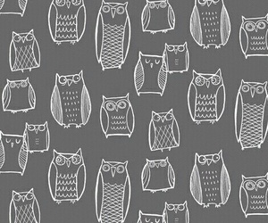 owl, background, and wallpaper image
