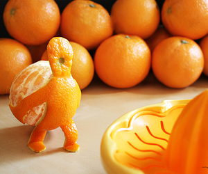 orange, fruit, and funny image