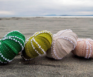 sea urchins, needle craft, and hand stitched image