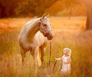 animal, child, and sweet image