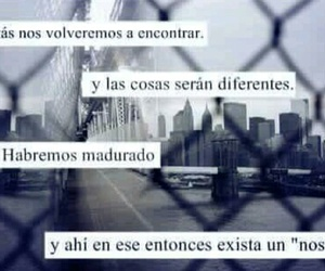 frases, love, and we image