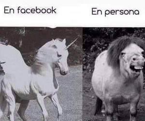 facebook, unicorn, and frases en español image
