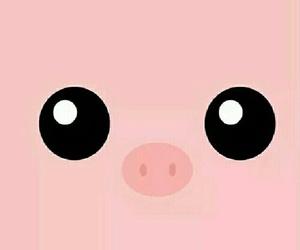 pig, pink, and animal image