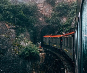 train, forest, and nature image