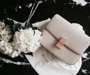 flowers, celine, and fashion image