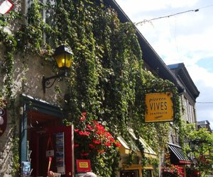 cafe, vines, and sign image