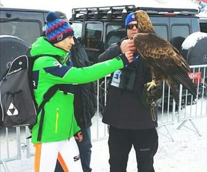 sport, kamil stoch, and winter image