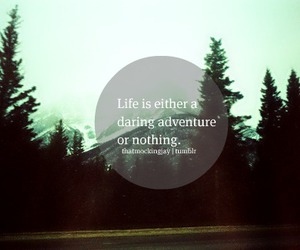 life, photography, and quote image