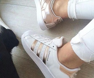 adidas, want, and gold image