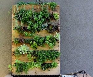 pallet recycled, diy pallet ideas, and pallet ideas image