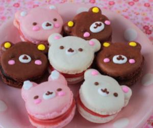 food, bear, and macarons image