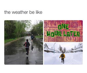 funny, snow, and rain image