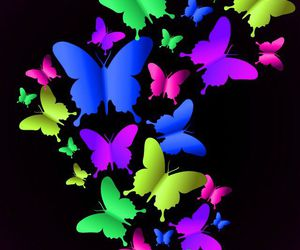 colores and mariposas image