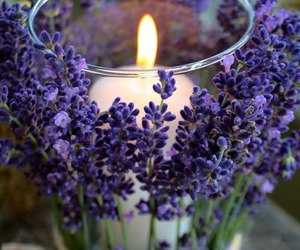 candle and inspiration image