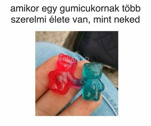 bear, candy, and funny image