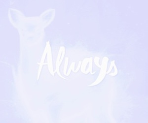 always, deer, and snape image