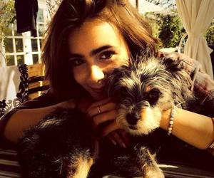 lily collins and dog image
