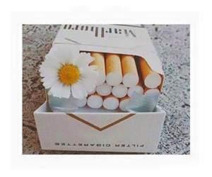 box, cigar, and cigarette image