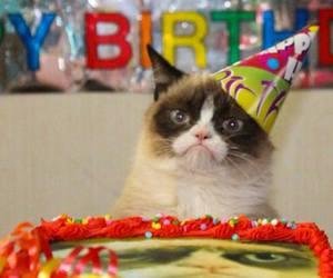 grumpy cat, birthday, and happy birthday image