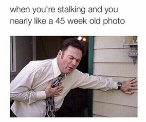 funny and stalking image