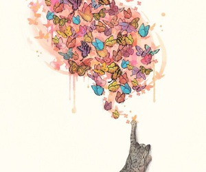 cat and butterflies image