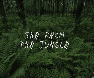 Drake, hiphop, and jungle image