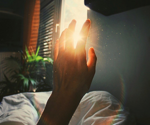 love, light, and tumblr image