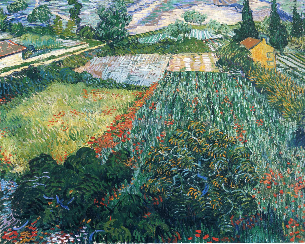 art, vincent van gogh, and aesthetic image