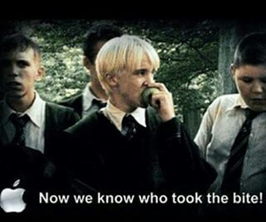 apple, harry potter, and draco malfoy image