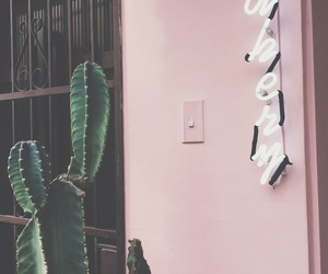 bakery, cactus, and green image
