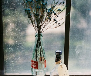 flowers, coca cola, and photography image