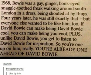 david bowie, funny, and inspirational image