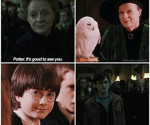 aged, harry potter, and hedwig image