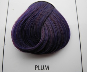 colour, hair, and plum image