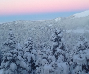 snow, trees, and sun goes down image
