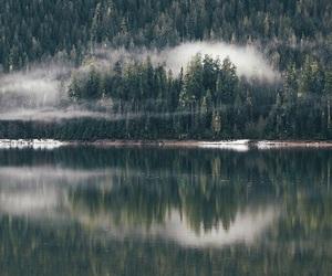 lake, nature, and outdoors image