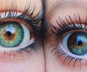 eyes, tumblr, and brown image