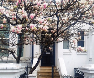 flowers, house, and tree image