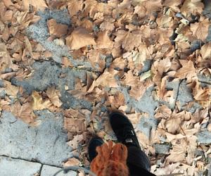 alone, autumn, and black image