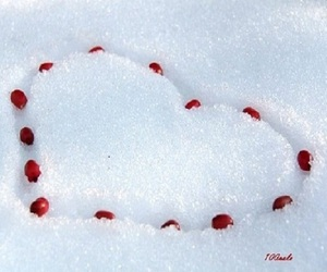 heart, romantic, and snow image
