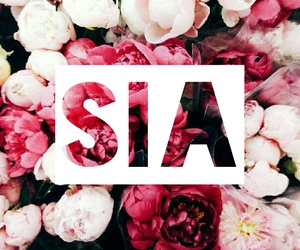 ️sia, flowers, and Queen image